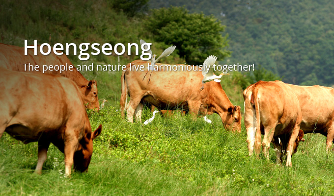 Hoengseong. The people and nature live harmoniously together!